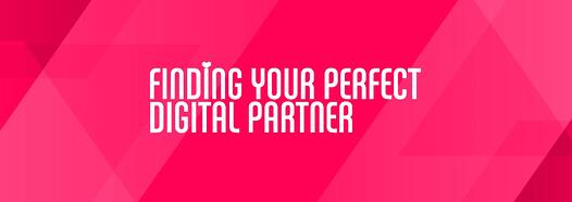 herofindperfectdigitalpartners.jpg